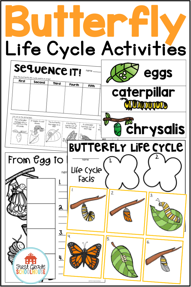 Predownload: Learning About The Butterfly Life Cycle Is Fun With This Packet Of Classroom Activities To Lea Butterfly Life Cycle Preschool Science Activities Science Poster [ 1152 x 768 Pixel ]