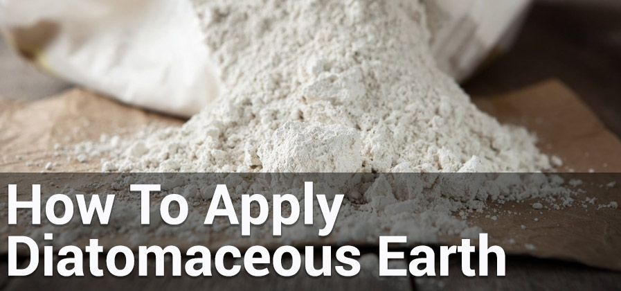 How To Apply Diatomaceous Earth Indoors And Outdoors Diatomaceous Earth How To Apply Earth
