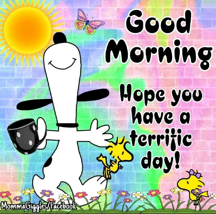snoopy woodstock good morning hope you have a terrific day peanutd