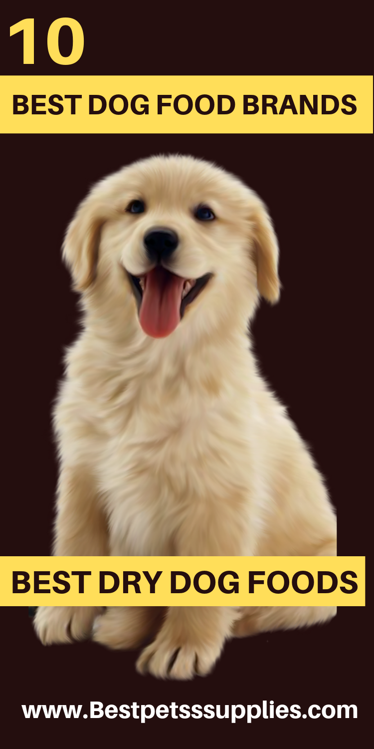 9 Best Dry Dog Food Brands For Your Dogs In 2020 Best Dog Food Brands Best Dry Dog Food Dog Food Brands