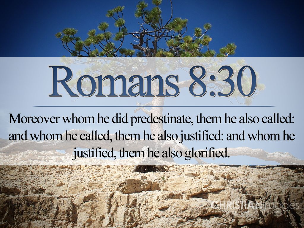 Romans 828 29 And We Know That In All Things God Works For The Good Of Those Who Love Him Have Been Called According To His Purpose