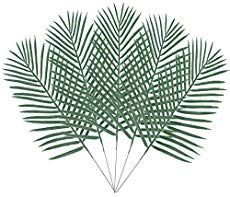 Palm Leaves & Fronds for a Green & Tropical Decor Touch -  Palm Leaves & Fronds for a Green & Tropical Decor Touch – Coastal Decor Ideas Interior Design DIY - #bohemianTropicalDecor #coastalTropicalDecor #colorfulTropicalDecor #Decor #Fronds #Green #leaves #Palm #touch #Tropical #TropicalDecorideas #TropicalDecorkitchen
