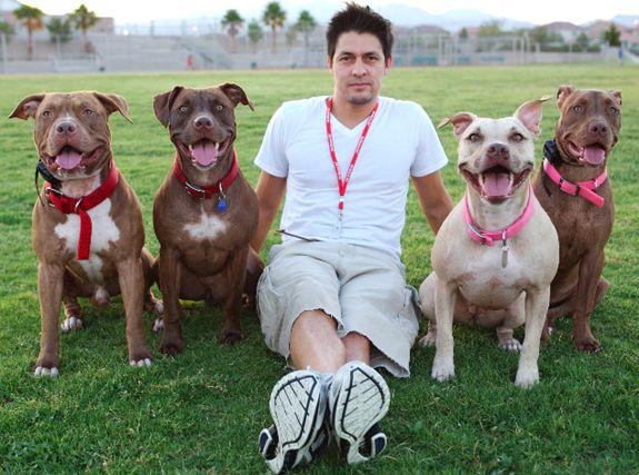 Stubbydog Stories Dj Tino Sanchez With His Pit Bulls Pitbulls