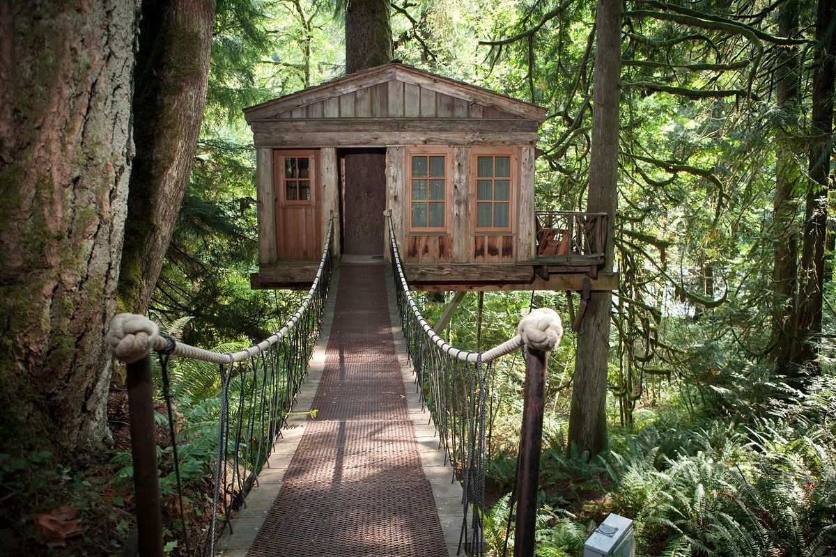 Tree House Point. A tree house bed and breakfast just 22