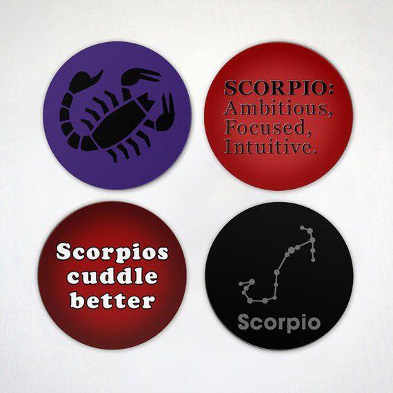 Scorpio Magnet Zodiac Sign Magnet Focused Scorpion 2.6