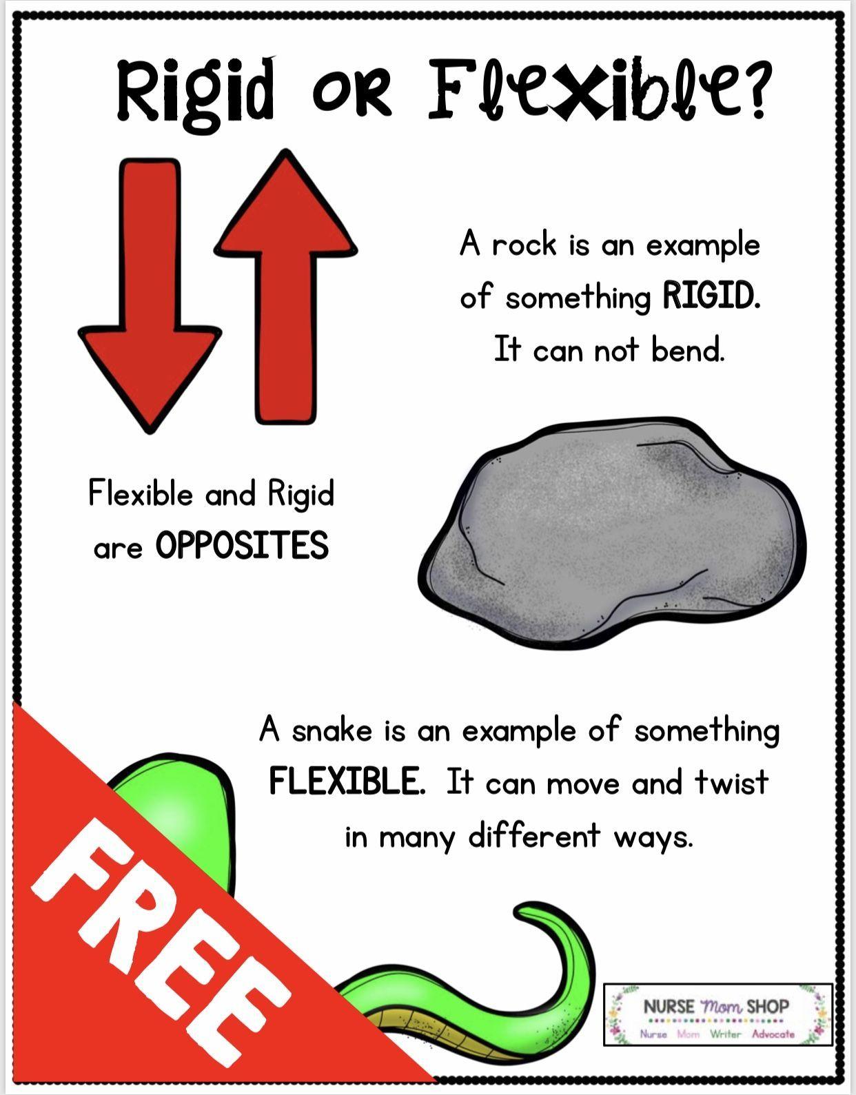 Freebie Flexible Thinking In