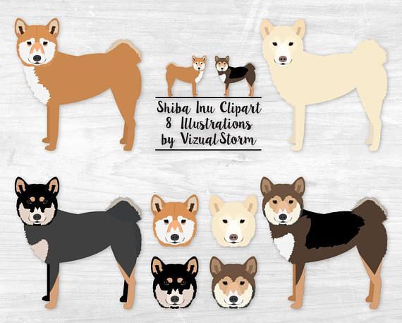 Shiba Inu Clipart Japanese Spitz Dog Breeds Full Body Standing And Standalone Heads In Sesame Red Cream Black And Tan Instant Download Shiba Inu Japanese Spitz Dog Dog Breed Poster