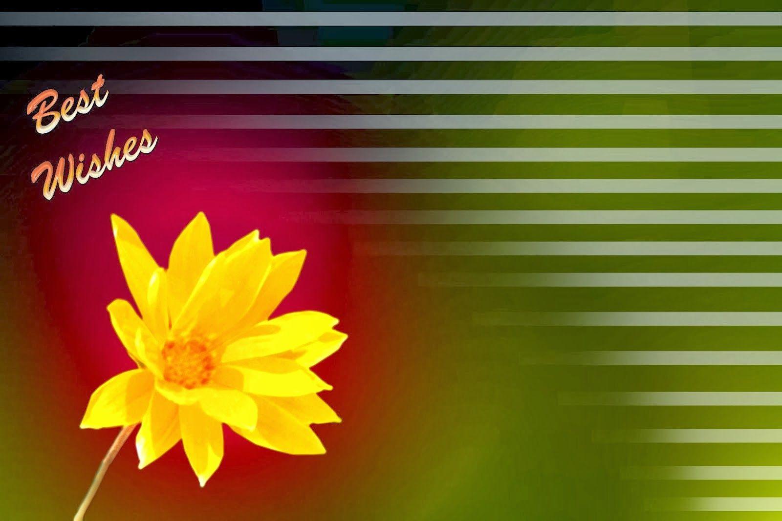 freephotoshop backgroundshighresolution wallpapers