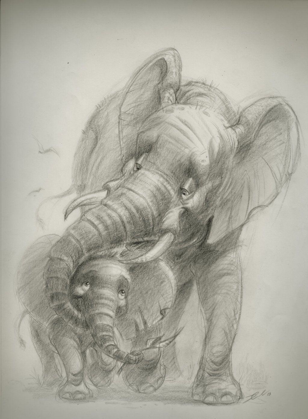 17 best images about elephant sketch an elephant 17 best images about elephant sketch an elephant drawings of elephants and elephant tattoo design