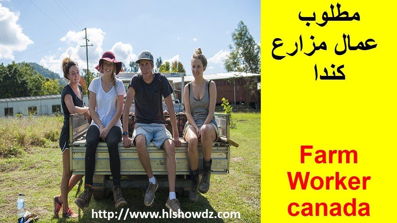 كيفية الهجرة إلى كندا كمزارع للعمل في المزارع Immigration Canada Canada Immigration
