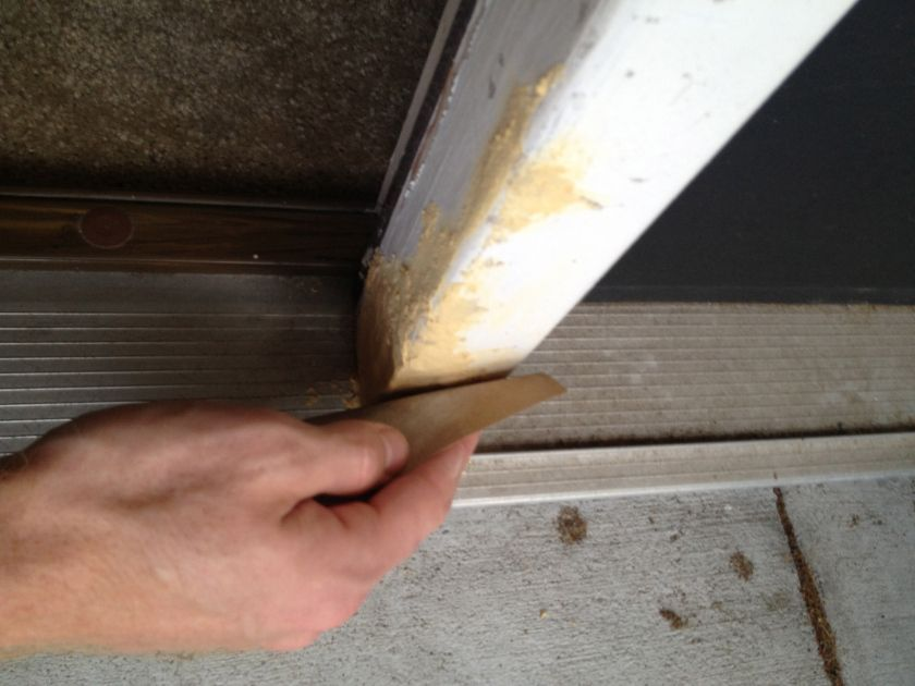 Fixing a dogchewed wall charleston crafted dog chews
