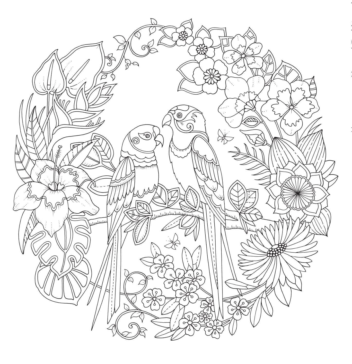 De Magie Van De Jungle Johanna Basford Mandala Kleurplaten Kleurplaten Dieren Kleurplaten