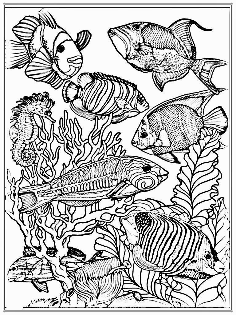 adult free fish coloring pages realistic coloring pages - Fishing Coloring Pages