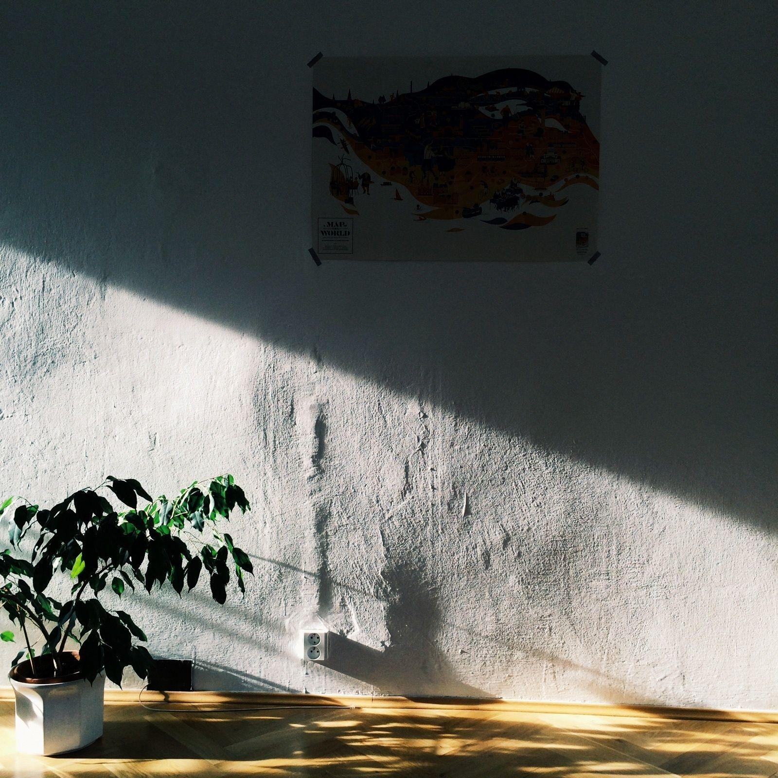 Тень на фотографии