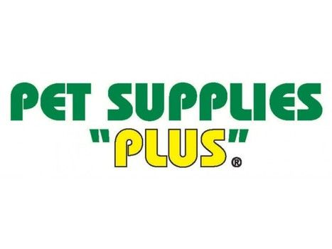 Cher Is Back On The Charts With Woman S World With Images Pet Supplies Plus Pet Supplies Pets