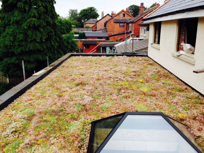 Image Result For Live Roof Extension Sedum Roof Flat
