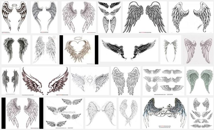 wings tattoo meanings tattoos. Black Bedroom Furniture Sets. Home Design Ideas