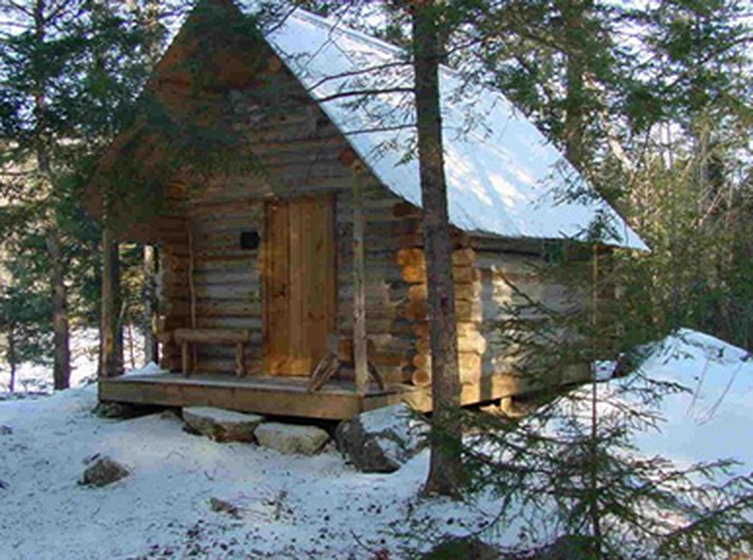 Bear Proof Fences Around Cabin - Google Search