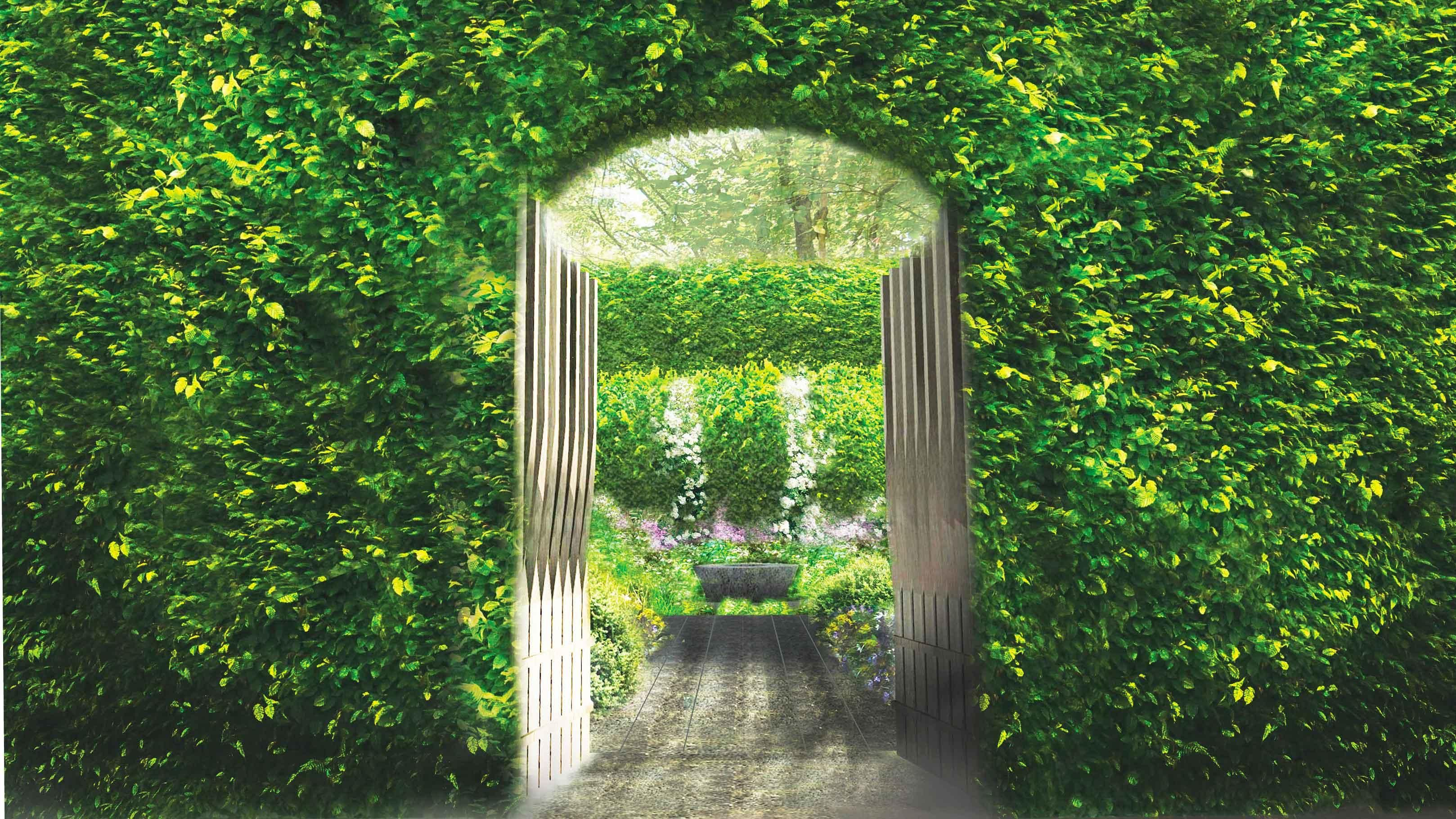 See The Linklaters Garden for Maggie's Garden at RHS