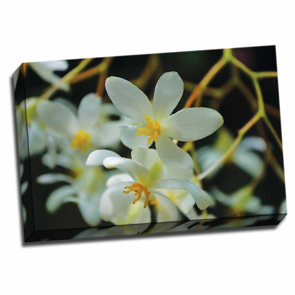 Picture It on Canvas 'White Orchids I' 24-inch x 16-inch Wrapped Canvas