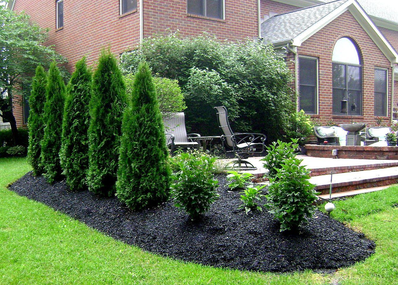 planting around patio