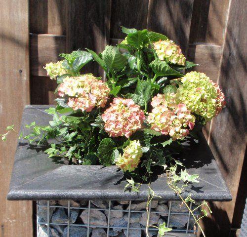 Tuin-Steen.nl - Plantenbak - steenkorf gevuld met Ardenner breuksteen