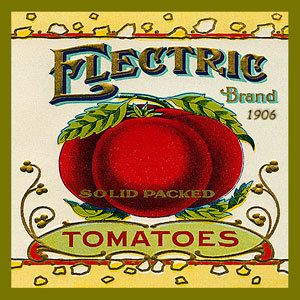 Olde America Antiques | Quilt Blocks | National Parks | Bozeman Montana : Vintage Canning Labels Hot Pads - Electric Brand Tomatoes