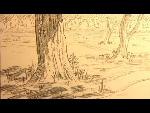 80 How To Draw Forest Backgrounds For Manga Youtube Background Drawing Forest Sketch Realistic Drawings