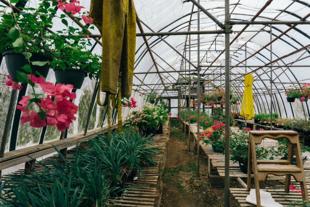 Bedford Greenhouses With Images Garden Center Greenhouse