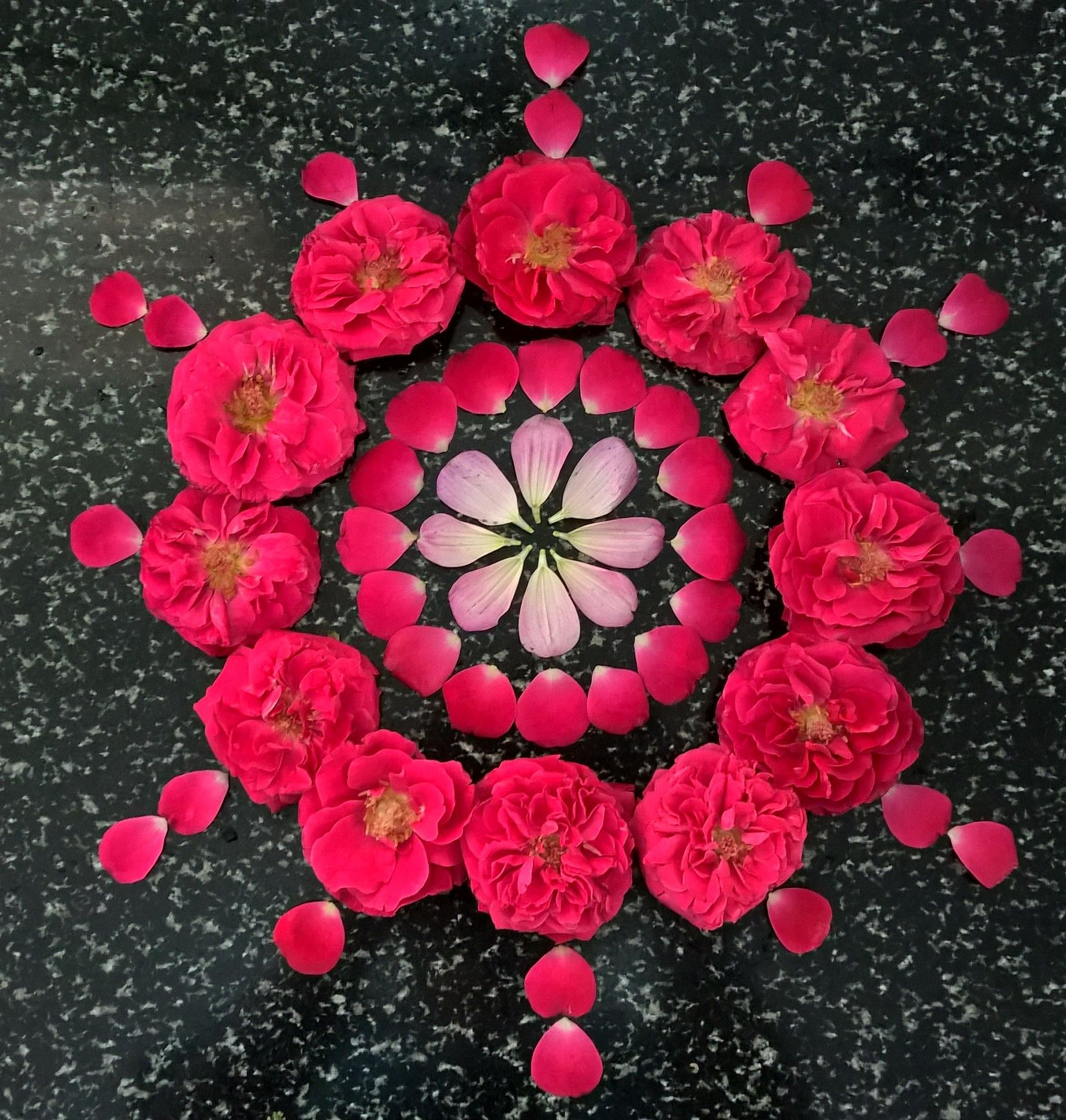 Rose petals n flowers.. Flower rangoli, Rangoli designs