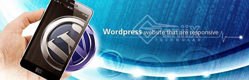 Get Best Web Design Companies In Ambala Web Design Companies In Chandigarh Or E Commerce Website Design In C Website Design Web Design Company Best Web Design