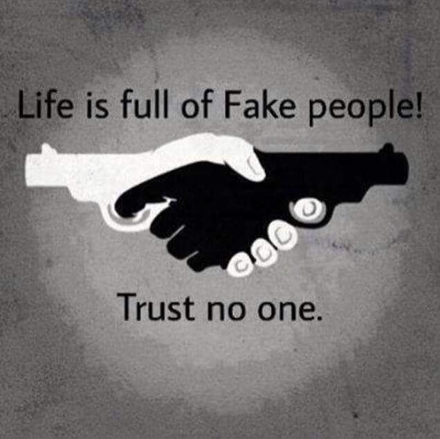 bee0322181d05e753dac2950611f6727 life is full of fake people meme change quotes pinterest