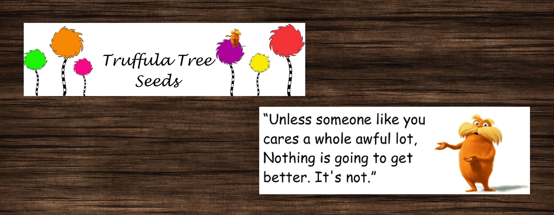 photo relating to Truffula Seeds Printable known as Truffula Tree Seeds Printable Toppers Kindergarten Tree