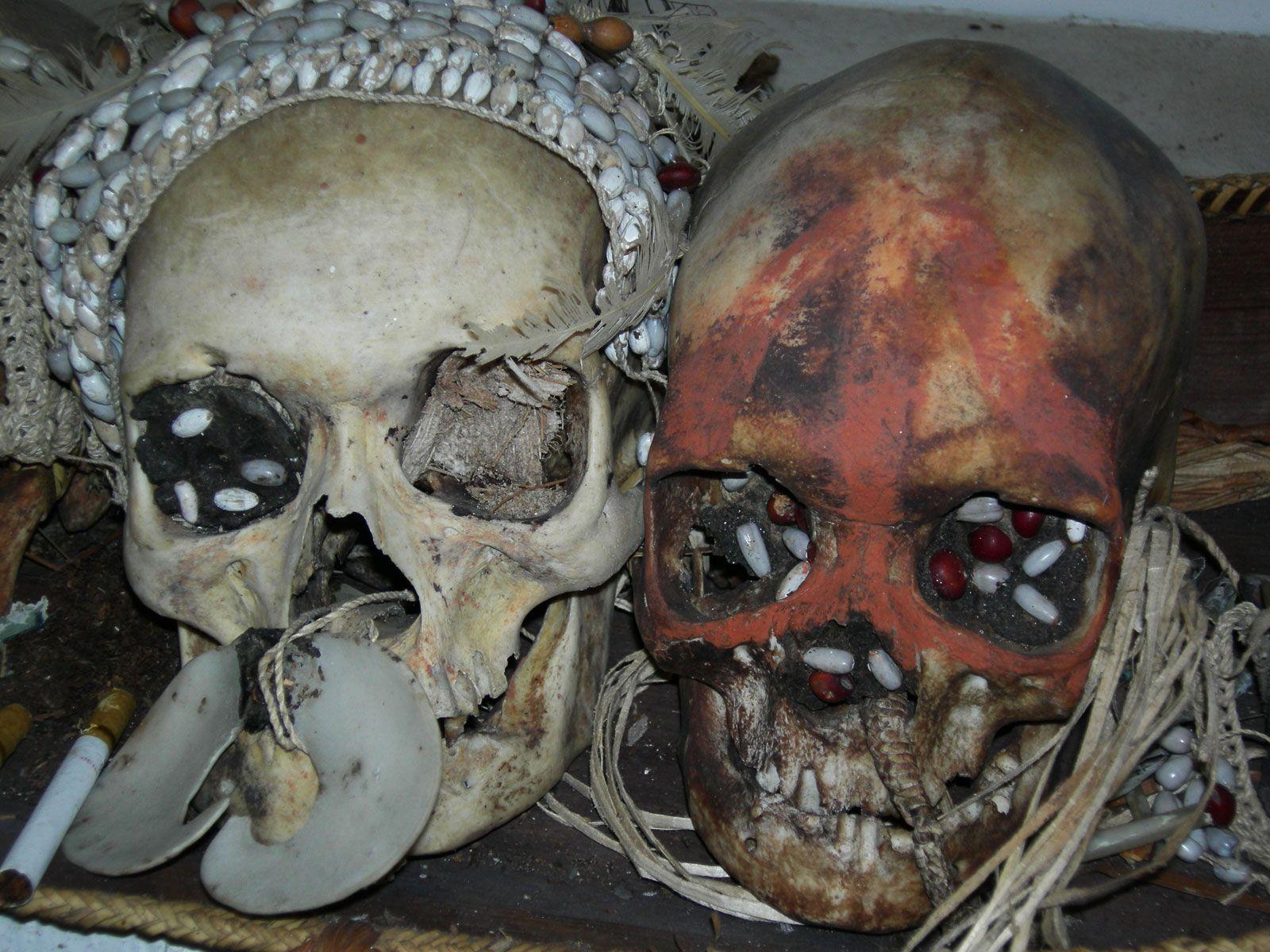Asmat ancestor skulls, museum of Agats, New Guinea, Papua ( Irian Jaya), Indonesia.
