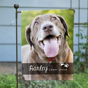 Lovely A Personalized Saluki House Flag/banner | Personalized Dog Photo Flags For  Home And Garden | Pinterest
