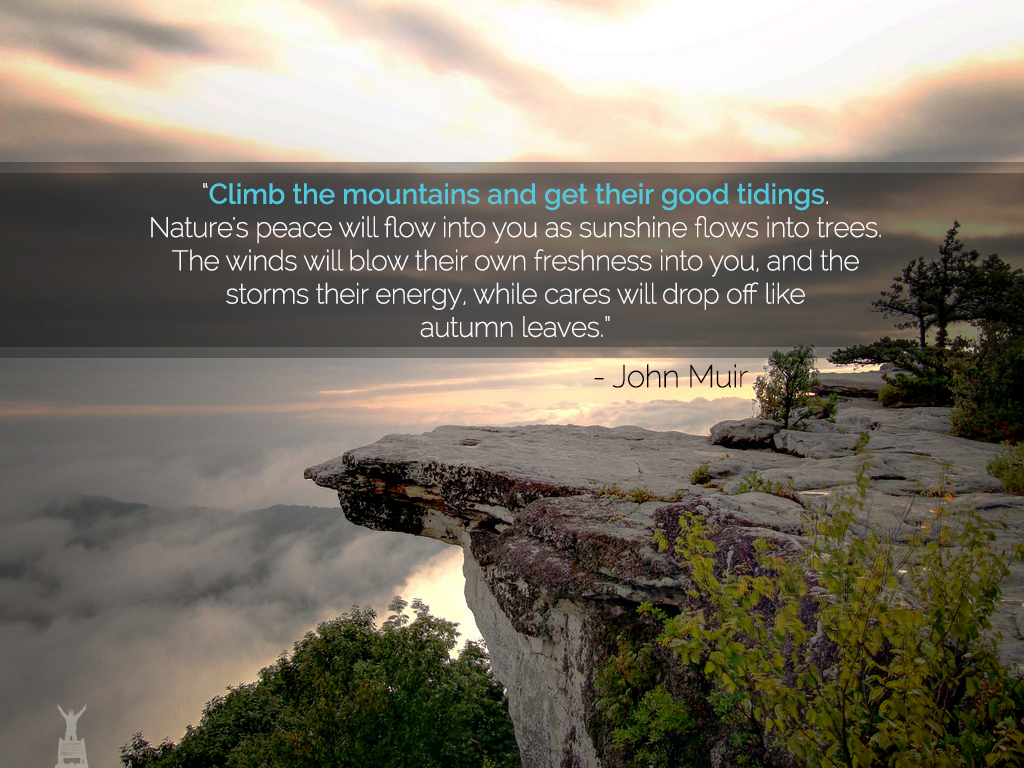 Quotes About Mountains Mesmerizing John Muir Mountains Quote  Interesting Quotes  Pinterest  John
