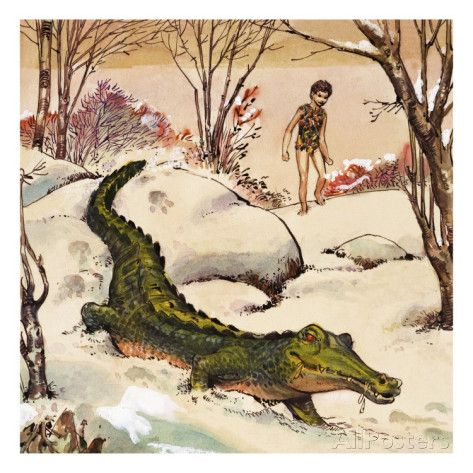Peter Follows The Crocodile Illustration From Peter Pan By J M Barrie Giclee Print Nadir Quinto Allposters Com Crocodile Illustration Illustration Peter Pan Art