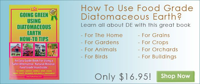 Health Way To Get Rid Of Pests Diatomaceous Earth Food Grade Diatomaceous Earth Diy Natural Products