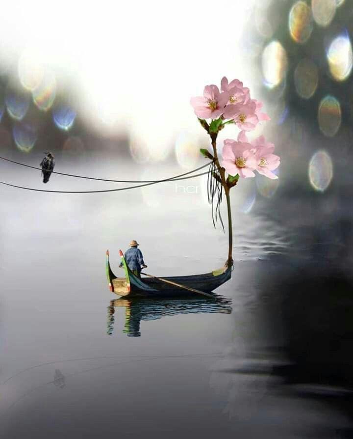 صور جميلة Naturfotografie Schone Tapeten Surrealistische Fotografie