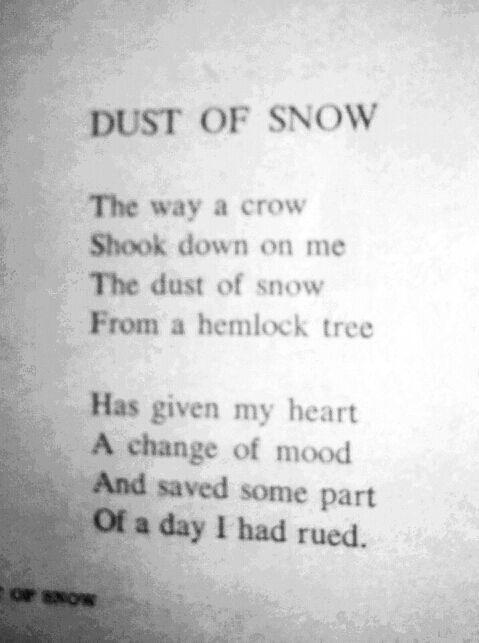 Ideas on essay questions for Robert Frost? (or any famous poet for that matter)?
