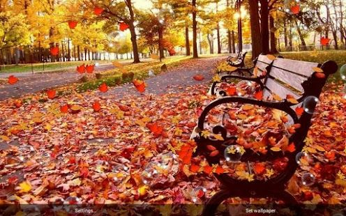 Autumn Live Wallpaper Download From Our Apps Store Androidworldstore Live Wallpapers Free Live Wallpapers Autumn Falling leaves moving wallpaper