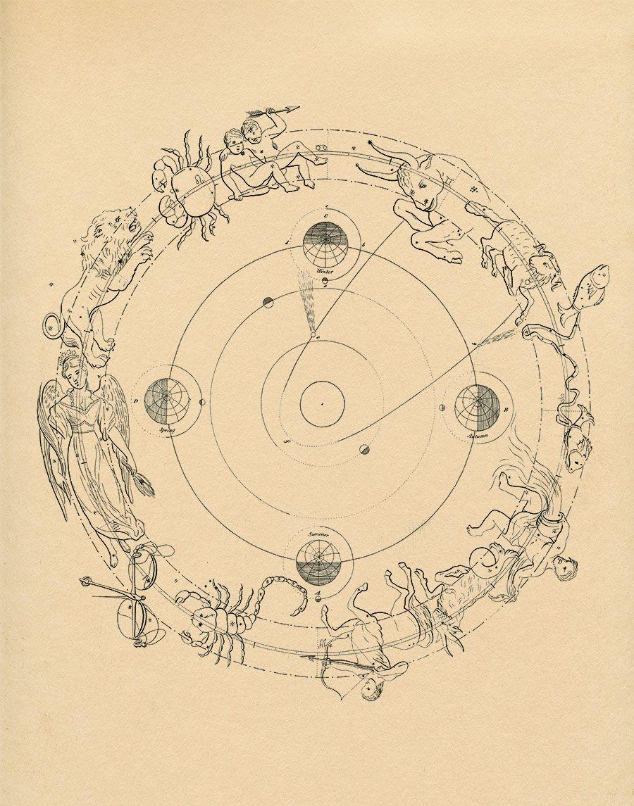 Constellation Chart, Astrology Signs, Cream wall decor   Walls ...