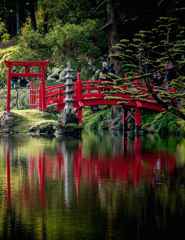 un air de japon au parc oriental de maul vrier dans le maine et loire jardin pont. Black Bedroom Furniture Sets. Home Design Ideas