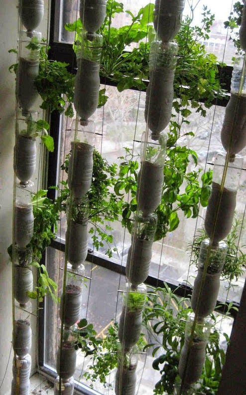 Windowfarm. Jardin hidroponico para las ventanas urbanas. Ecoinventos - Google+