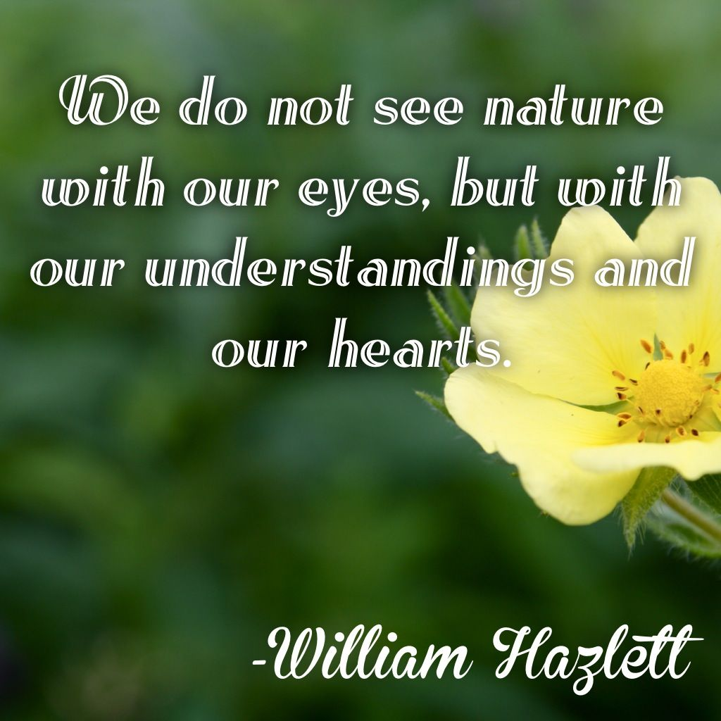 Best Cover Photos For Facebook Hd With Quotes: #nature #garden #beauty #outdoors #inspirational #quotes