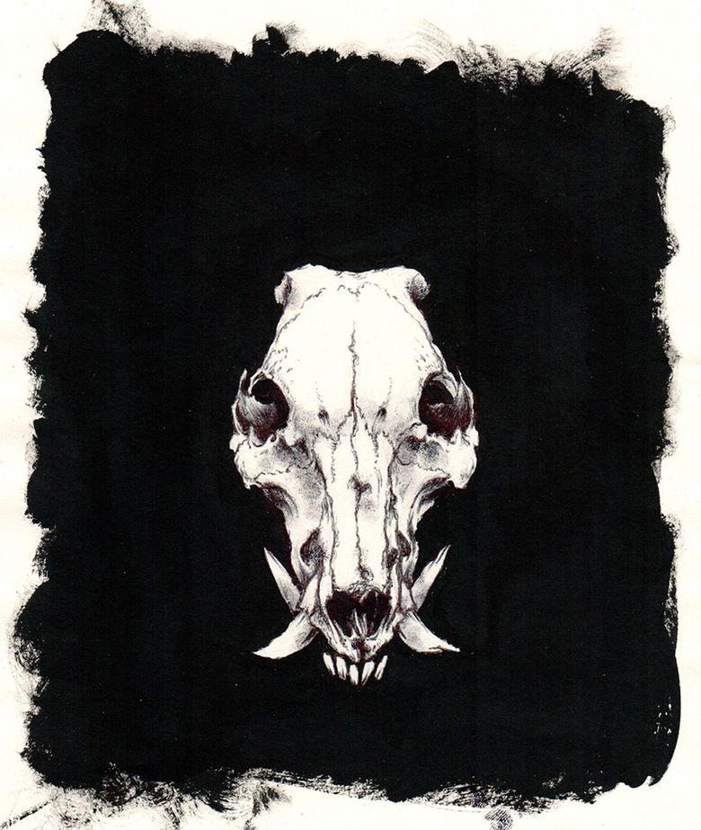 Image of Boar skull | ART - DRAWINGS - B+W | Pinterest ...