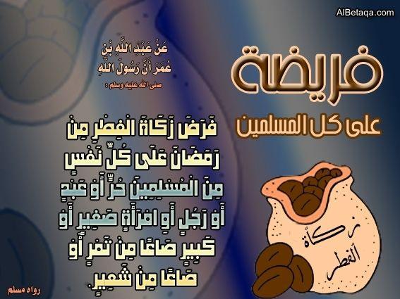 فضل وأهمية واحكام زكاة الفطر رمضان شهر الصوم شهر رمضان الزكاة زكاة الفطر Quransservant Ecard Meme Ecards Memes