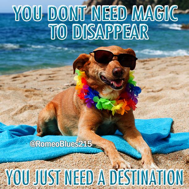 Beach Vacation Humor Funny Lmao Lol Vacation Meme Life Humor Funny Memes
