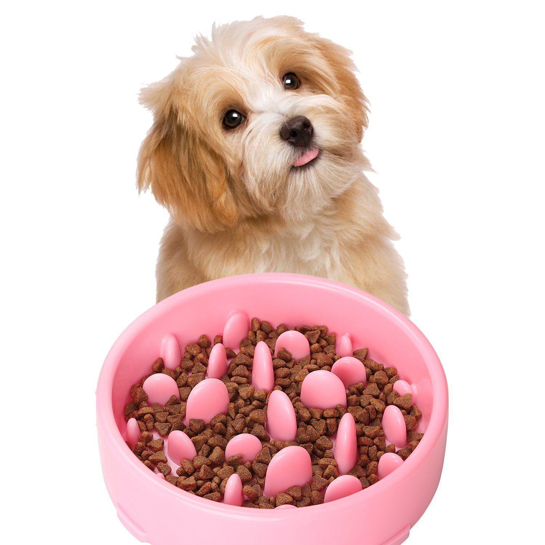 Amazon Com Jasgood Bloat Stop Dog Puzzle Bowl Maze Dog Food