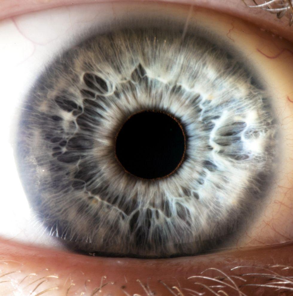 Digital Ambient Light Sensor (ALS) With High-Precision Human-Eye Response